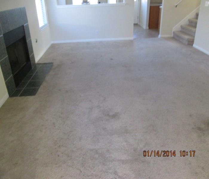 Austin Residential Property Mngr Carpet Cleaning Before