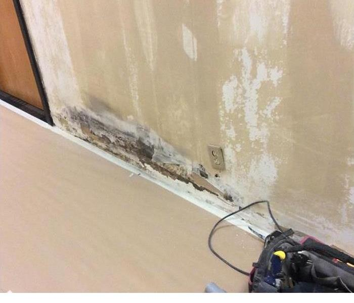 Mold Remediation Improving Air Quality and Stopping Mold