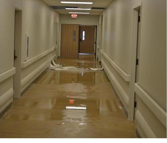 Water Damage Water Heater Leaks and Flooding: What To Know About the Cleanup Process