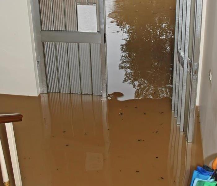 Storm Damage Effective Methods for Removing Water From Basements